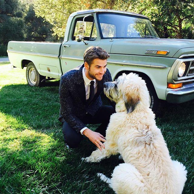 Liam Hemsworth a uitat-o pe Miley Cyrus? Cu cine a fost surprins actorul