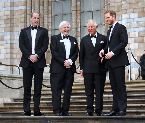 Prințul Charles, înlocuit de Prințul Harry