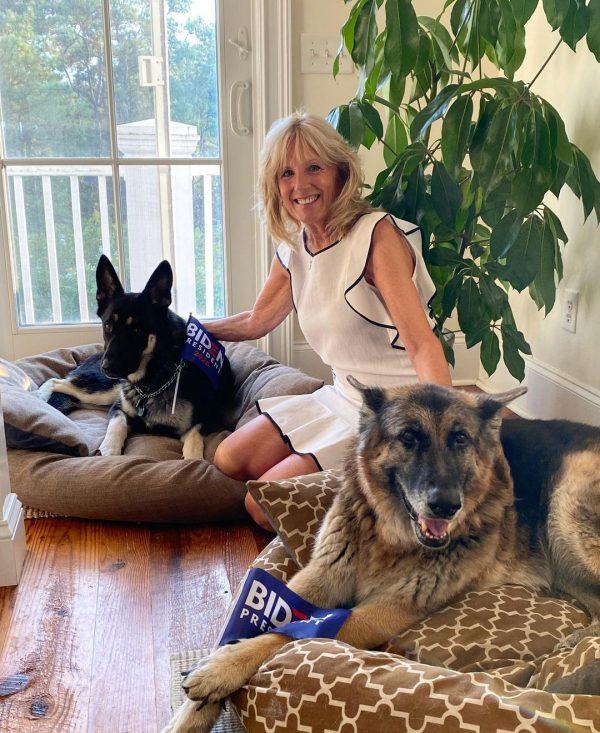 Joe și Jill Biden și-au adus la Casa Albă cei doi câini, Champ și Major