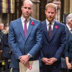 Prințul William și Prințul Harry și-au aruncat cuvinte dure prin telefon! De la ce a pornit scandalul